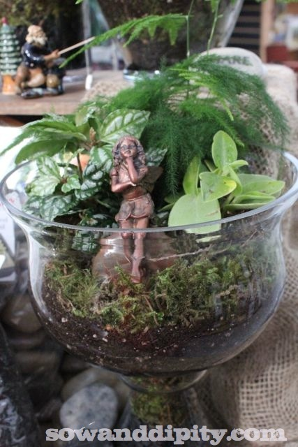 I love to glue fairies to rocks and put them in my terrariums, like this little one who's resting in this bowl