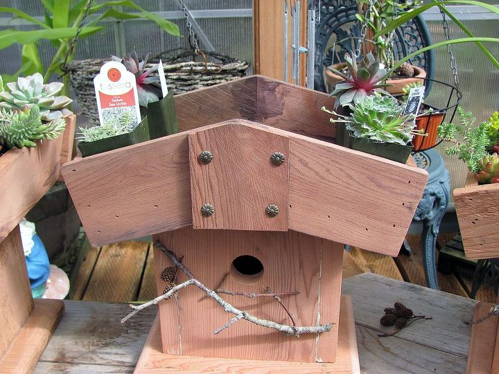 birdhouses, diy, gardening, outdoor living, pets animals, woodworking projects