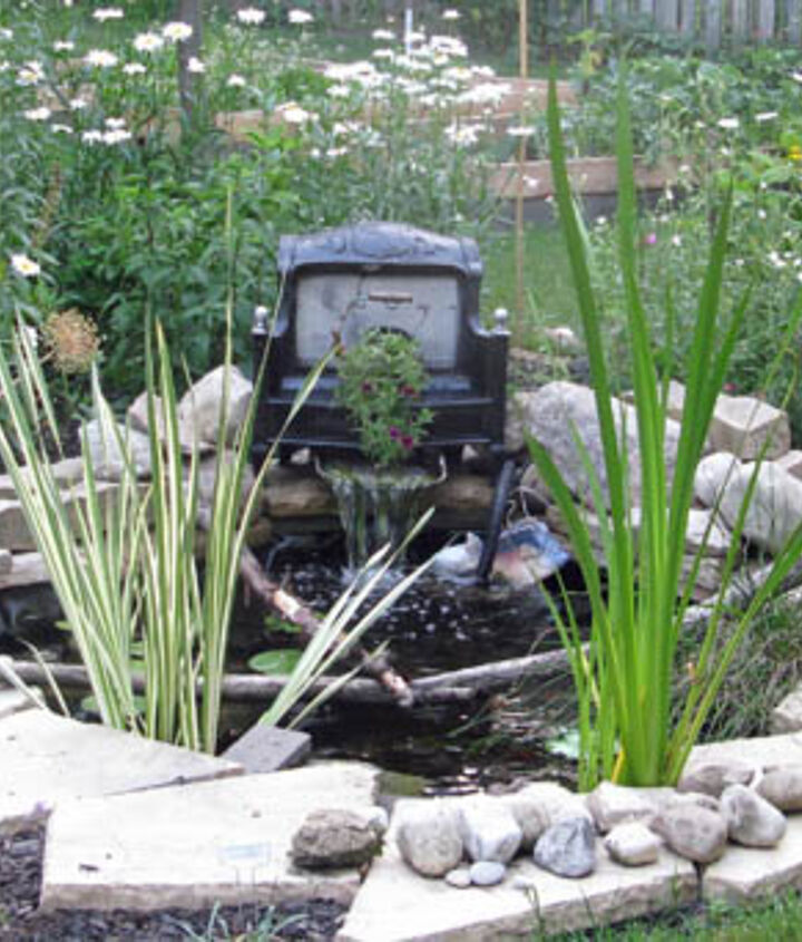 It's amazing how much livelier a garden seems with the sound of running water. See my blog for everything you need to know to start a little pond and waterfall in your garden.