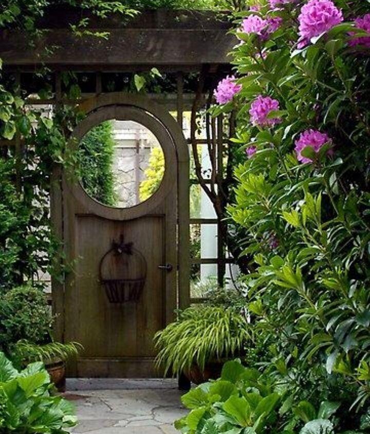 q mystety flower what is it, flowers, gardening