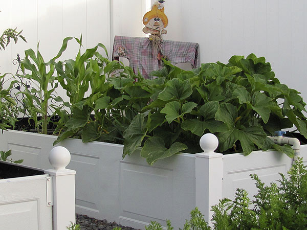 raised garden beds, diy, gardening, raised garden beds, repurposing upcycling, Garage doors into raised garden bed