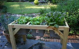 self watering planter, bedroom ideas, gardening, raised garden beds, Swiss chard and kale last spring