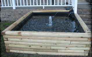 koi pond, outdoor living, ponds water features, front view