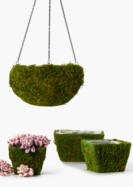 these cute moss baskets are perfect for a spring patio, gardening, outdoor living, Moss Baskets available at jamaligarden com