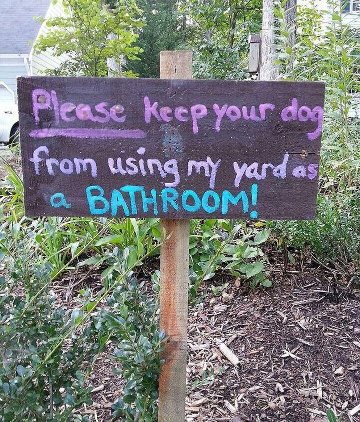 no bathroom zone, crafts, flowers, gardening