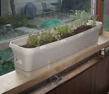growing herbs indoors, gardening, Growing herbs indoors works well for many reasons If you are looking to start growing herbs indoors here are a few tips that should get you well on your way