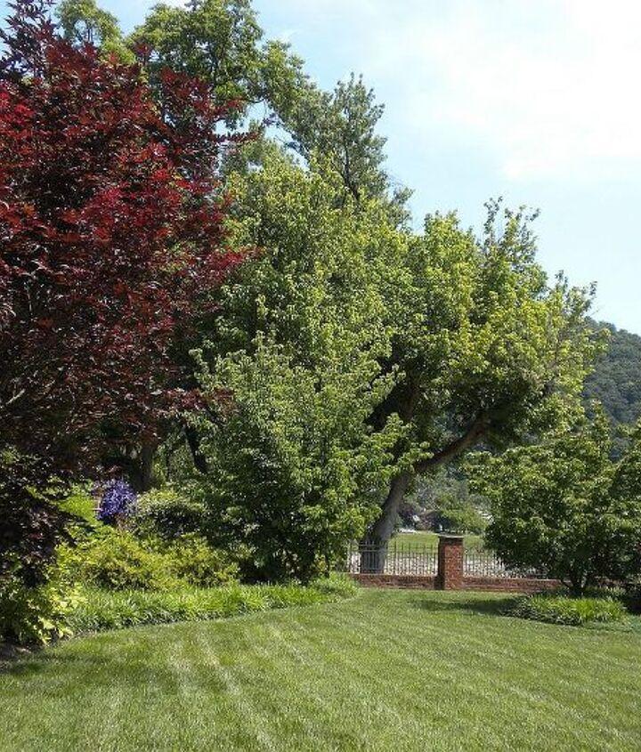 Landscape from back, left