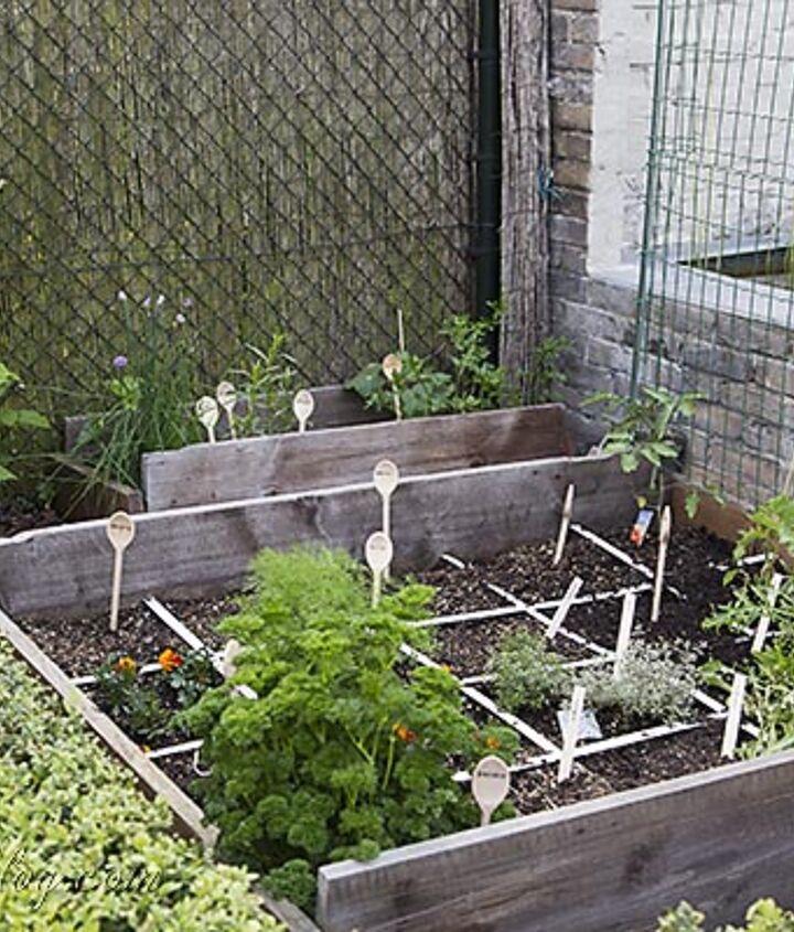 My mini square foot garden in a forgotten border.