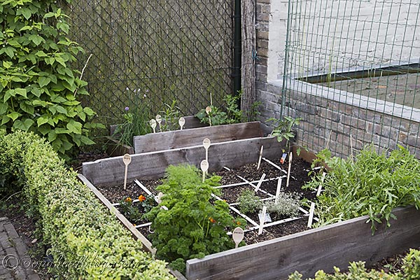 Fun Garden Markers And Plant Support In My Vegetable Gardening Mini Square