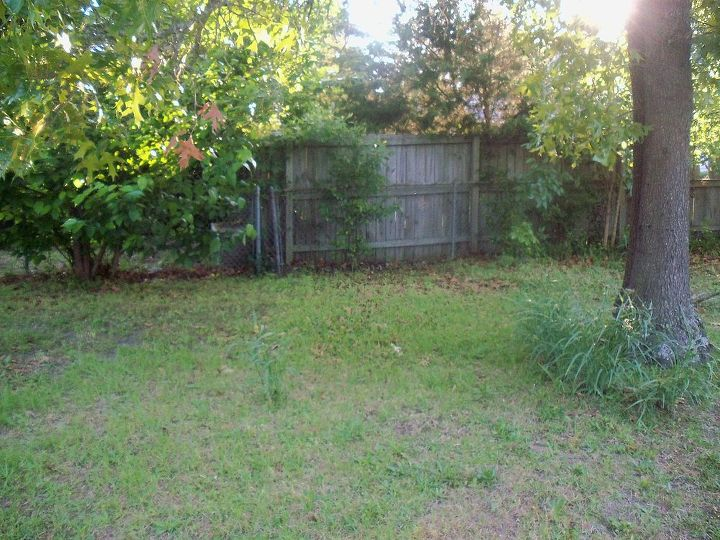 80 weeds in backyard what to do, gardening, landscape