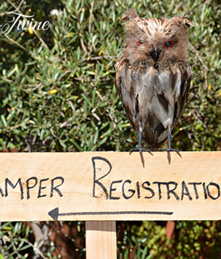 The sign leading guests into the house.  Other signs were used around the backyard to identify other locations, such as the Camp Grub, Trail Ahead and S'More Station.
