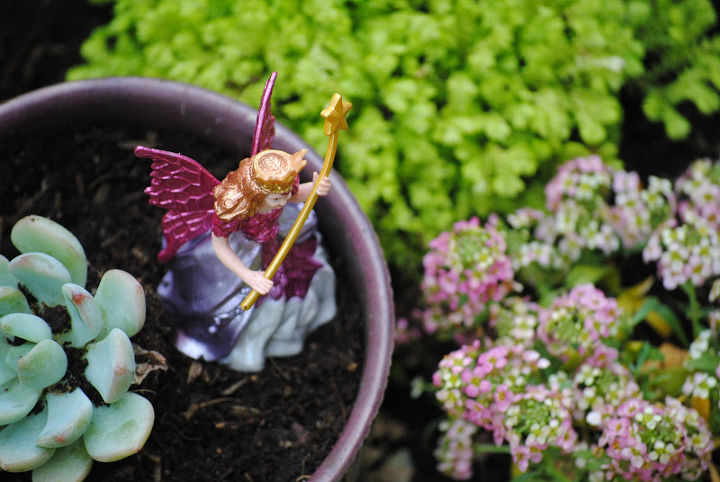 Adding in fairies makes it an 'official' fairy garden