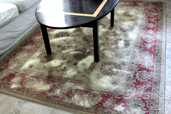 homemade carpet cleaner and deodorizer, cleaning tips, flooring, Sprinkle it on the carpet you want to clean and deodorize