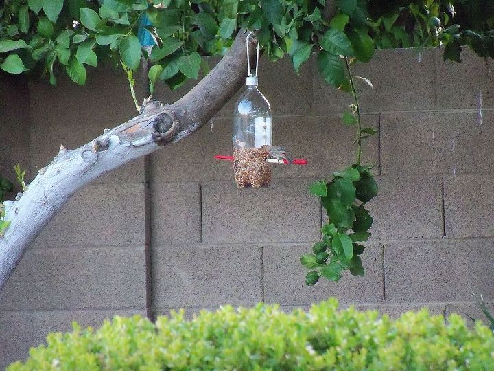 coke bottle bird feeder, outdoor living, repurposing upcycling