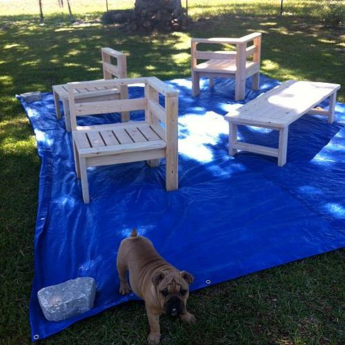Before the stain.. (Cali, my English Bulldog was supervising the process for me)