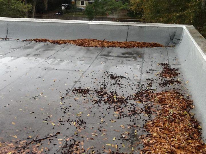Resultado de imagen para roof debris