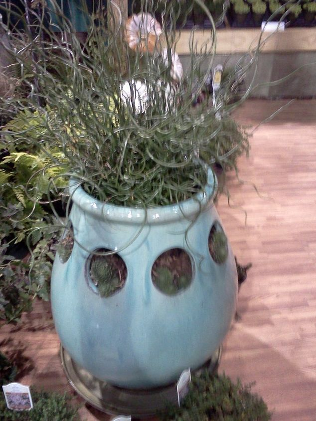 This pot caught my eye, looks like an alien thing
