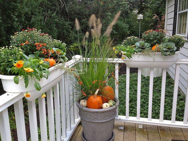 fall decor, gardening