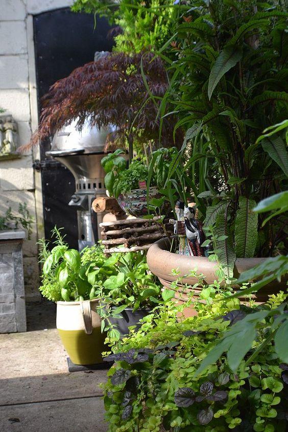 garden journal, container gardening, gardening, outdoor living