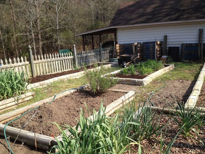 well the garden beds are finally finished i need some ideas to reduce the weeds in, gardening, New Garden Beds