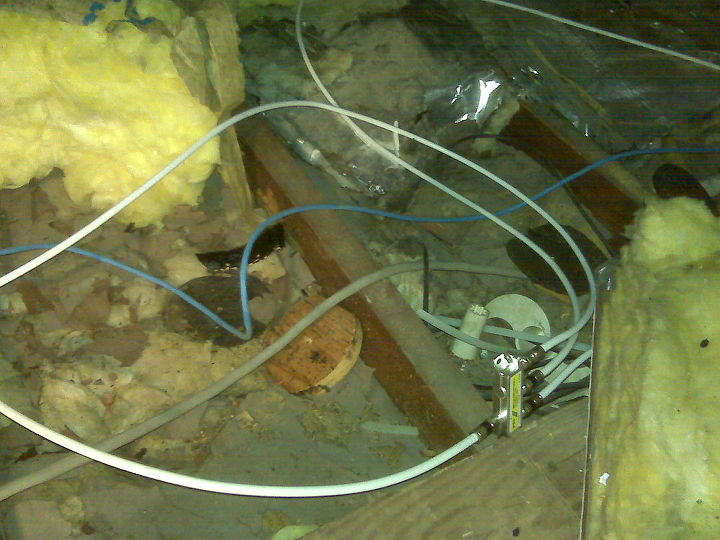 """Notice all of the displaced insulation in attic. The result of many """"trades"""" that are supposed to be professionals."""