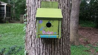q painted birdhouses, crafts, painting