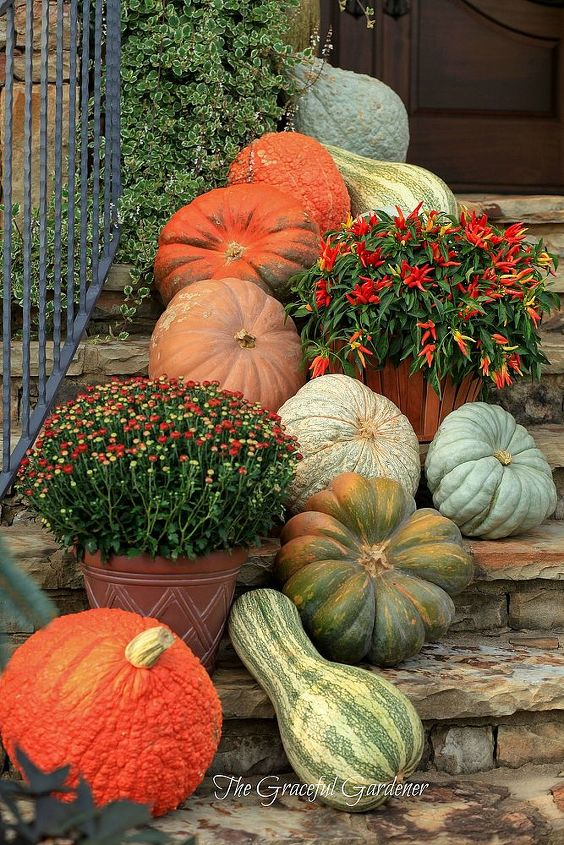 decorating your garden with pumpkins, gardening, outdoor living, seasonal holiday decor