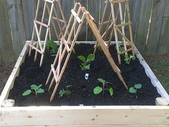 raised garden beds, diy, gardening, raised garden beds, woodworking projects, second bed with plants