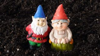 anybody know where we can find a little female gnome, gardening, outdoor living