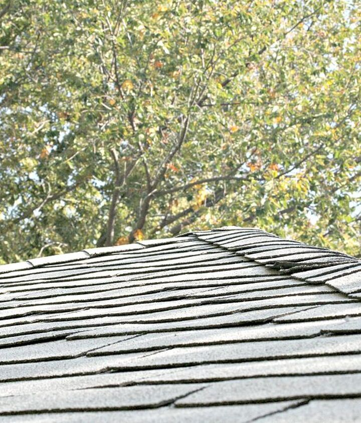 Look for damage in the shingles from ice damming
