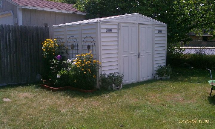 This is where the hibiscus is can't wait to show new pic when in full bloom