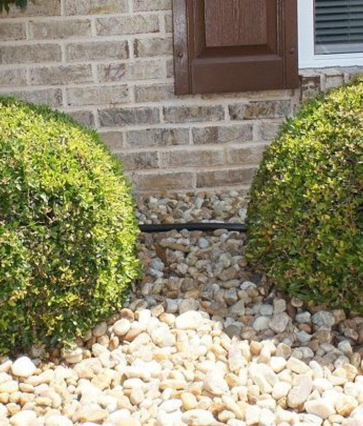 Shrubs with house numbers