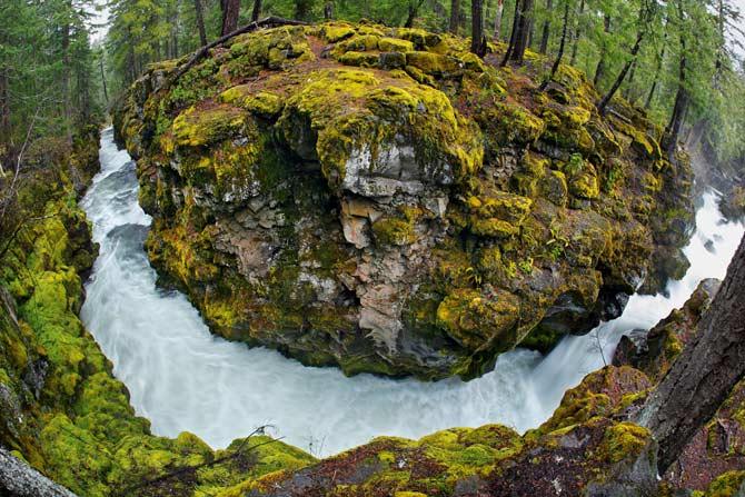 my blog for origins oregon, gardening, outdoor living, Rogue River Oregon