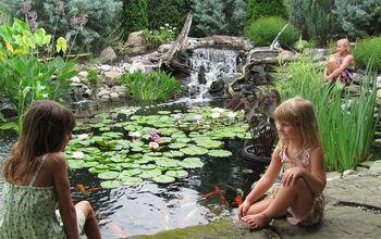 Low maintenance Ponds