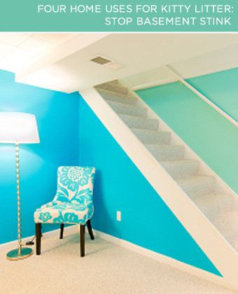 Stop Basement Stink. Having a basement can definitely be a plus – extra living space and room to store your skis is awesome. But, this additional area can come at a price. A stinky price.
