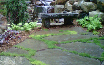stone bench, landscape, ponds water features, Resting Spot