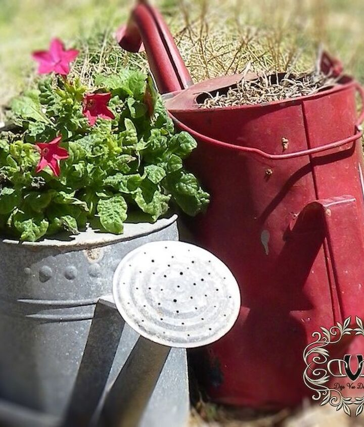 I love watering cans...I collect them, and every year I find a different way to plant them up.