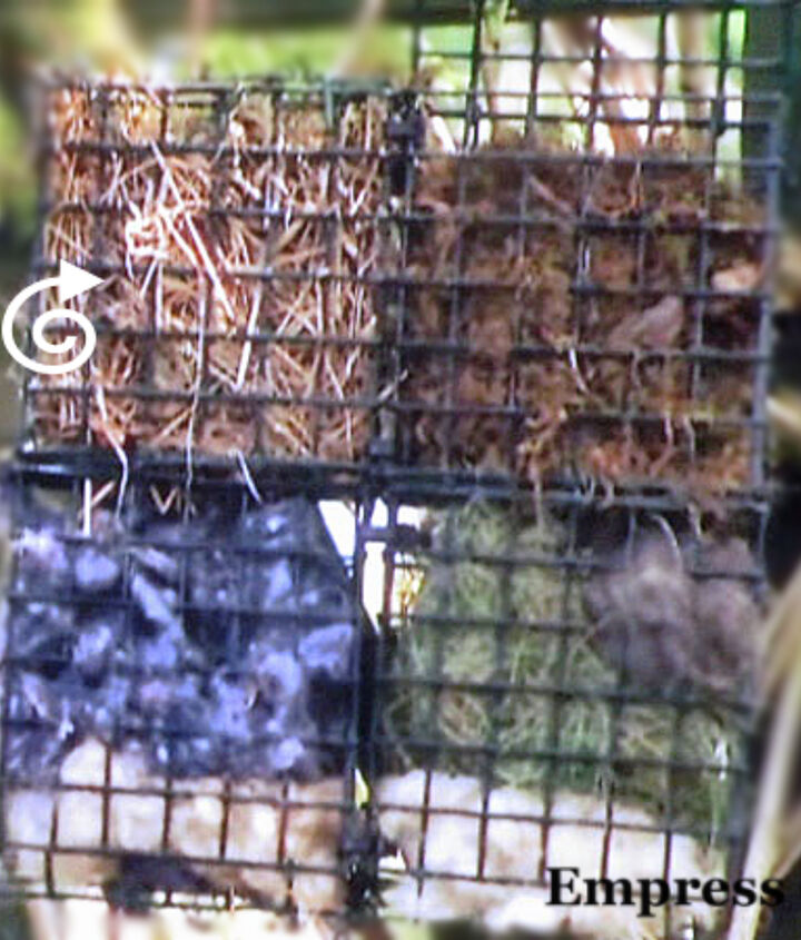 """Use suet cages to hold the materials. Be cautious with yarn-you want short pieces (less than 6"""")."""