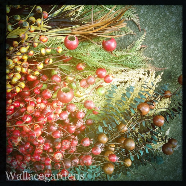 Making magic with dried grasses, eucalyptus, seed pods and berries. A few of these add a nice touch to fall decorating.