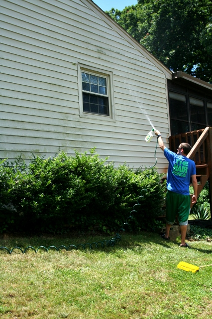 First step: spray down the siding with the cleaner attached to the hose.