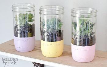 painted mason jar succulent planter, container gardening, crafts, flowers, gardening, mason jars, painting, repurposing upcycling, succulents