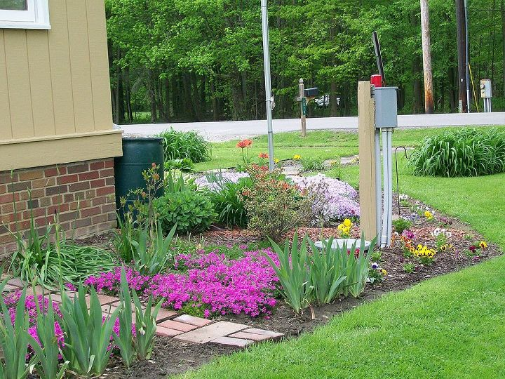 finally i have some spring color to share, flowers, gardening