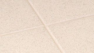 q unloved bathroom help, bathroom ideas, cleaning tips, diy, flooring, home improvement, home maintenance repairs, tile flooring, tiling, After treated with the groutshield color seal