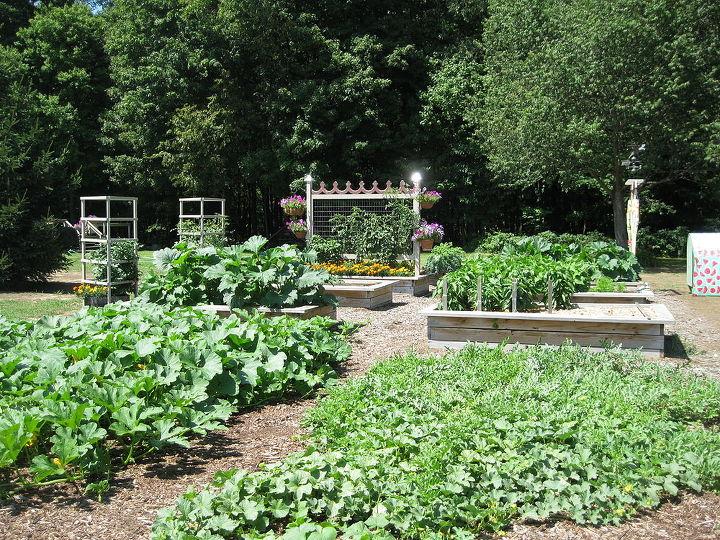 vegetable garden, gardening, outdoor living, My Vegie Garden