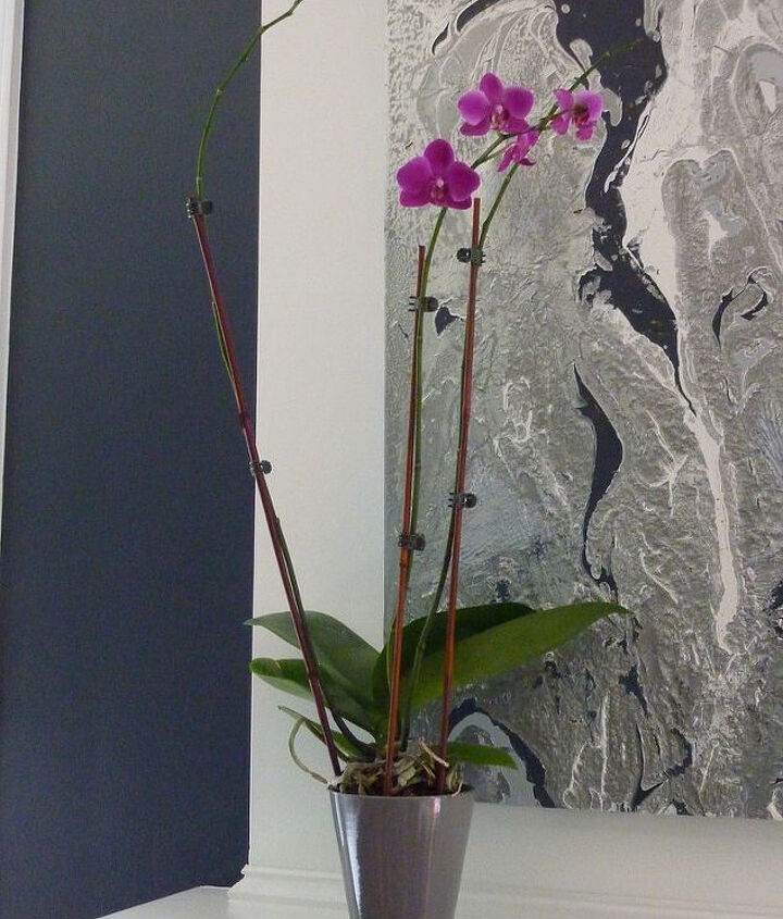 Orchids over the fireplace