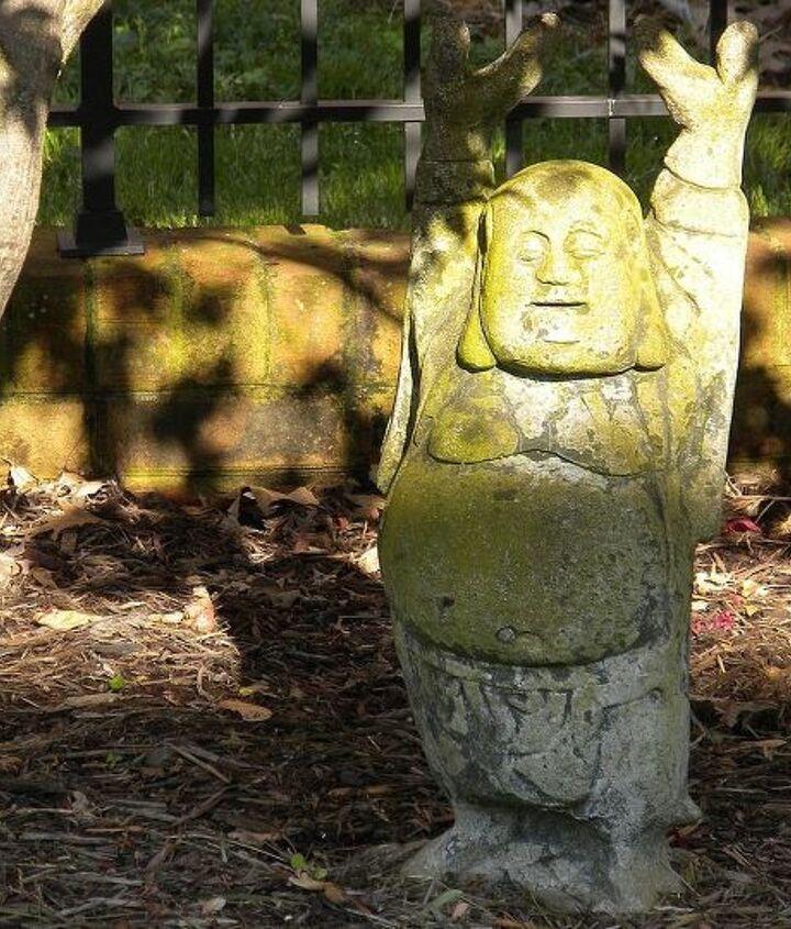 Stretching Buddha, 'holding up' the Japanese maple. Namaste!