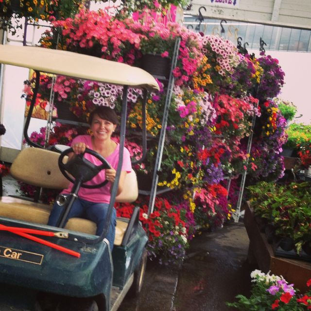 Bringing in the pretty... busy job as a manager of a Garden Centre