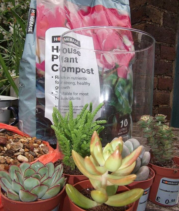 you'll need: a glass vessel,gravel,house plant compost and a selection of succulents
