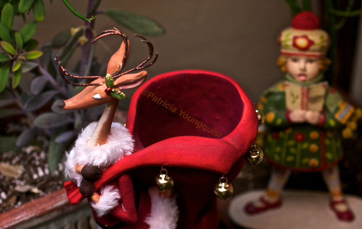 The tam sporting caroler eyes a reindeer's gift sack! More Info @ http://thelastleafgardener.tumblr.com/post/15623185437/today-is-the-first-day-of-ordinary-time-in-2012