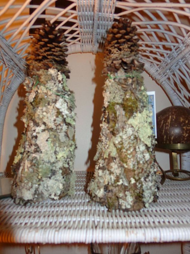 bark trees for porch or small garden area or home decor mantle, crafts, gardening, outdoor living